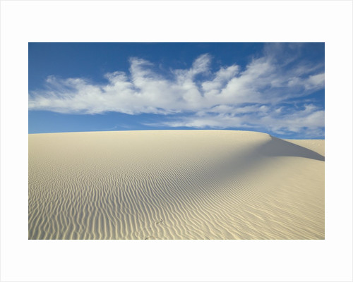 Dune in White Sands National Monument by Corbis