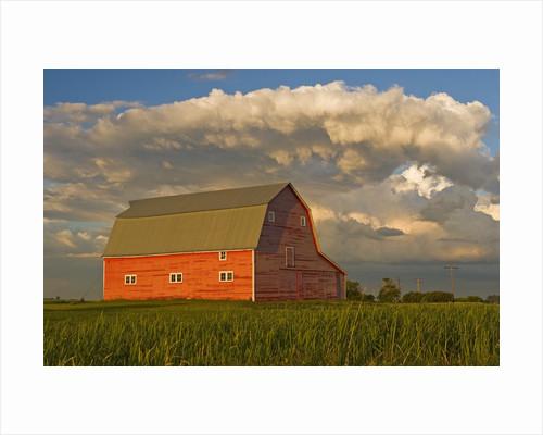 Barn and cumulonimbus cloud mass near Bromhead, Saskatchewan, Canada by Corbis