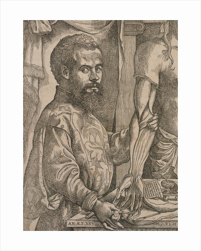Andreas Vesalius dissecting the muscles of cadaver by Corbis