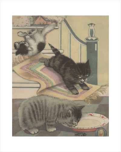 Kittens playing and drinking milk by Corbis