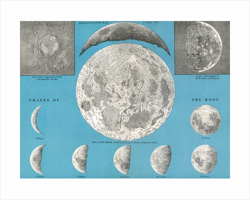 Illustration of the full moon and phases of the moon by Corbis