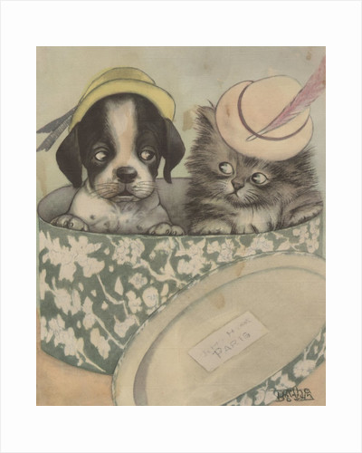 Puppy and kitten in hat box wearing hat by Corbis