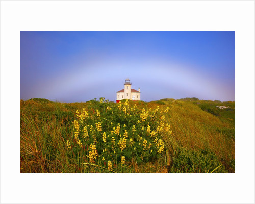Morning light and fog make a fogbow over Coquille River Lighthouse, Bandon, Oregon Coast, Pacific Oc by Corbis