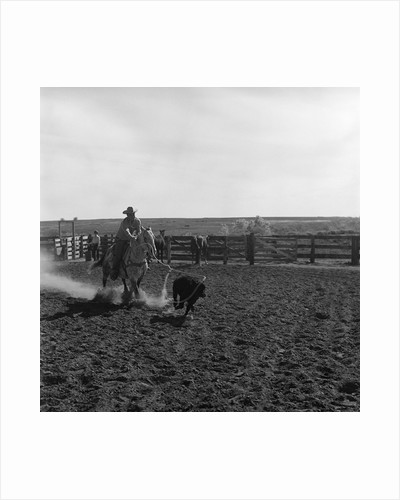 1960s cowboy rodeo rider competitor on horse chasing calf roping event skill sport by Corbis