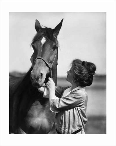 1900s 1910s young woman with upswept hair holding horse by halter by Corbis