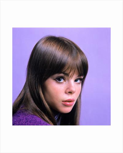 1960s portrait young brunette woman teen head shoulders purple background by Corbis