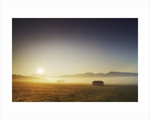 Countryside in mist in morning by Corbis