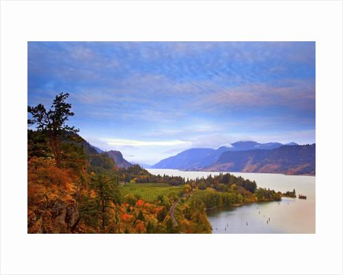 sunrise over Columbia River, Columbia River Gorge National Scenic Area, Oregon, Pacific Northwest by Corbis