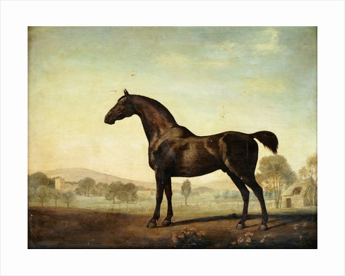 Sweetwilliam, a Bay Racehorse, in a Paddock by George Stubbs