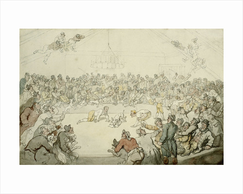 The Westminster Pitt by Thomas Rowlandson
