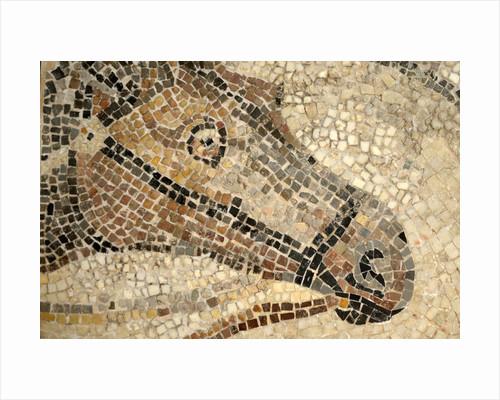 Horse Roman Floor Mosaic by Corbis