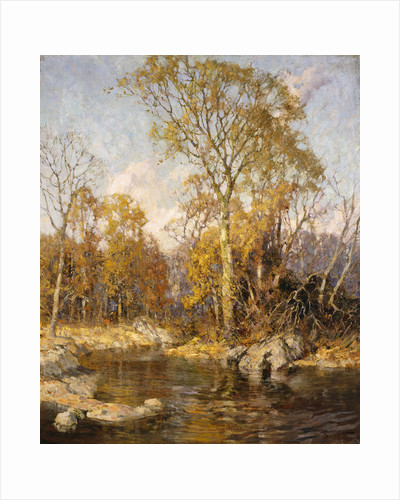 Autumn Reflections by Frederick John Mulhaupt