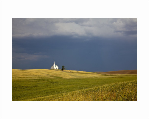 Rocklyn Community Church With Wheat fields and storm coming by Corbis