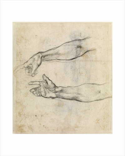Study of two arms for 'The Drunkenness of Noah' in the Sistine Chapel by Michelangelo