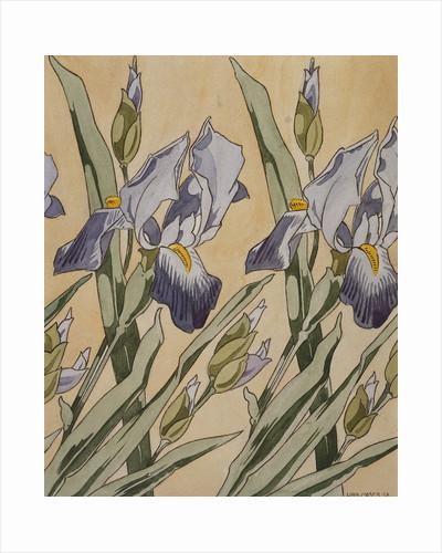 Iris by Kolomon Moser