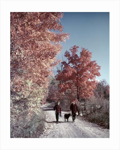 1950s 1960s Senior Couple Man Woman Walking Autumn Country Road by Corbis