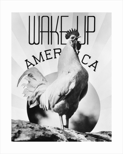 1930s Montage Rooster Wake Up America & Sunrise by Corbis