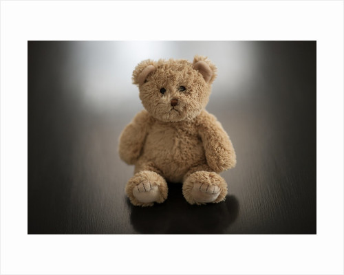 Studio shot of teddy bear by Corbis