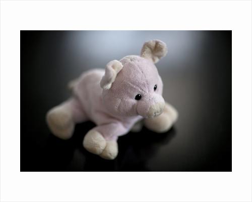 Studio shot of stuffed pig toy by Corbis