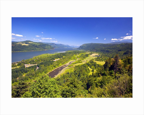 Columbia River Gorge from Crown Point, Oregon, Columbia River Gorge National Scenic Area, Oregon by Corbis