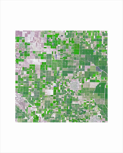 Agricultural fields near Wasco, California by Corbis