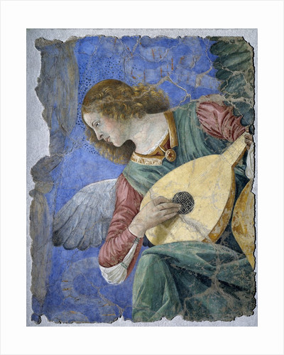 Musical Angel or Angel Musician by Melozzo da Forli