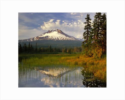 Mt. Hood reflection by Corbis