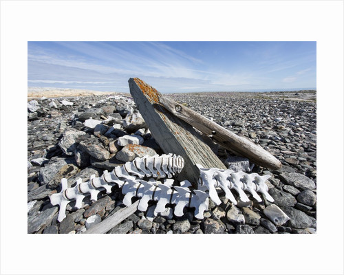 Whalers' Graves, Deadman Island, Nunavut, Canada by Corbis