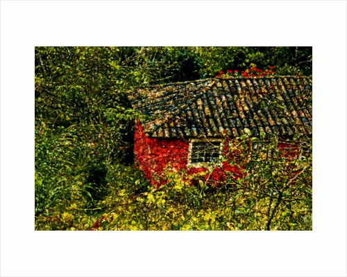 Red House by Corbis