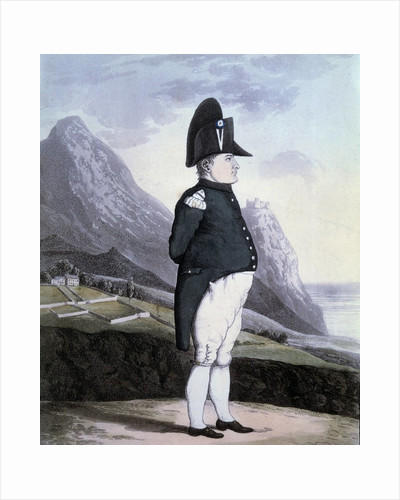 Portrait of Napoleon I on the island of St Helena, 1815 by Corbis