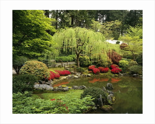 Japanese Garden Pond by Corbis