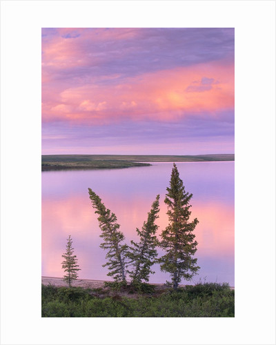 Calm Lake Reflecting Pink Clouds by Corbis