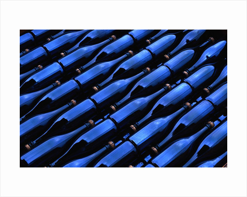 Champagne Bottles Waiting for Labels at Argyle Winery by Corbis