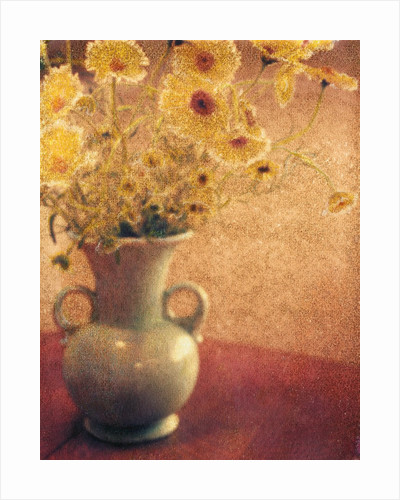 Mary's Flowers by Jennifer Kennard