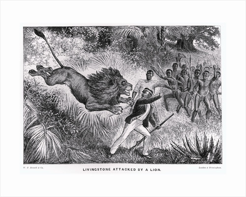 Livingstone Attacked by a Lion by Corbis