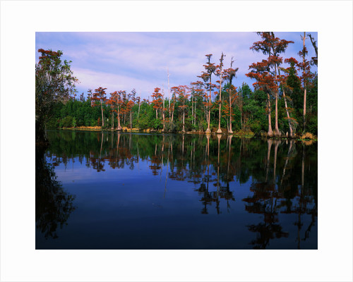 Billy's Lake by Corbis