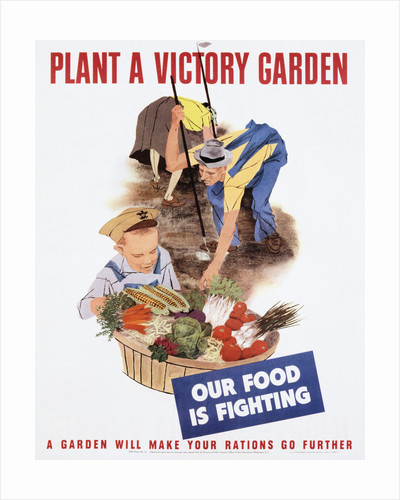 Plant A Victory Garden Poster By Corbis