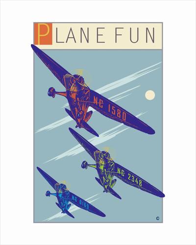 Plane Fun by Steve Collier