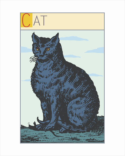 Cat by Steve Collier