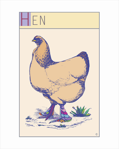 Hen by Steve Collier