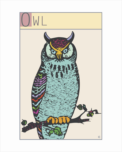 Owl by Steve Collier
