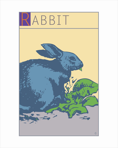 Rabbit by Steve Collier