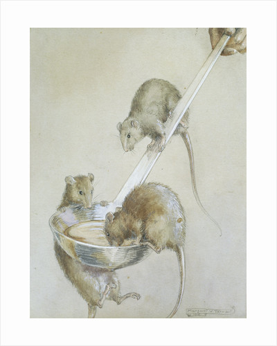 Book Illustration Depicting Three Mice on a Ladle by Margaret Winifred Tarrant