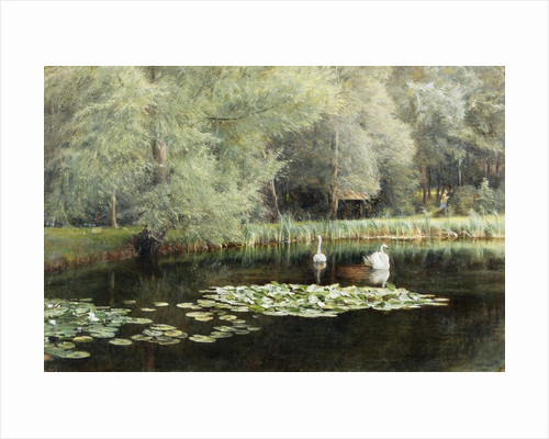 The Lily Pond by Edward R. Taylor