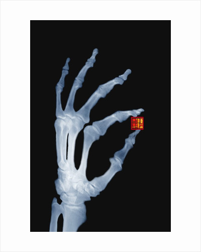 Skeletal Hand Holding Computer Chip by Corbis