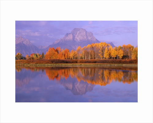Oxbow Bend Reflecting Mount Moran by Corbis