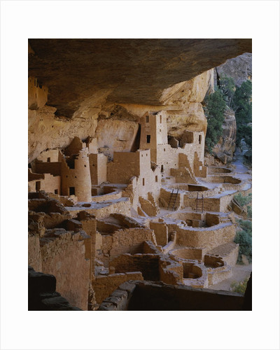 Cliff Palace by Corbis