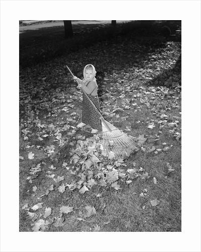 Little Girl Raking Leaves by Corbis