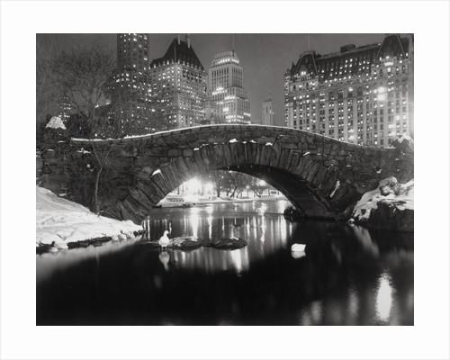 New York Pond in Winter by Corbis