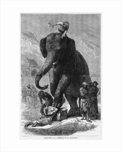 Execution of a Criminal By an Elephant by Corbis